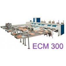 Сортировочно-упаковочная машина ECM 300